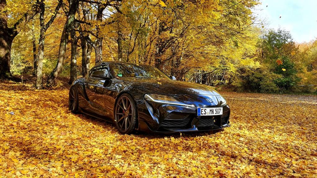 Schwarz steht dem Herbst gut :D